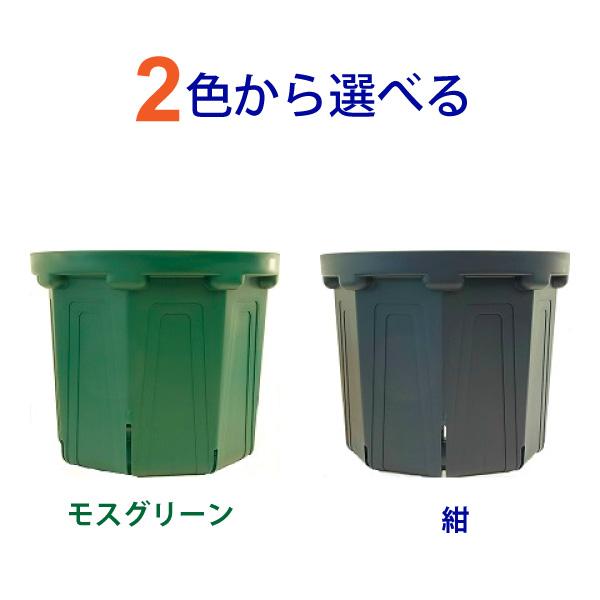 特別セール品 2色から選べる 8号スリット鉢 直径24cm CSM-240 高品質新品