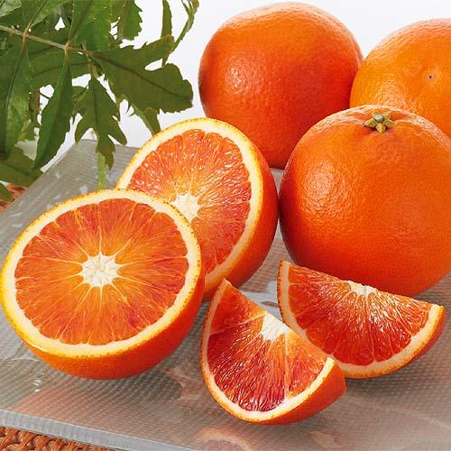 みかんの種類>ブラッドオレンジ(タロッコオレンジ)愛媛県産>ブラッドオレンジ(タロッコオレンジ)家庭用