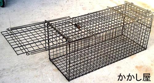 後部扉からエサの取り付けが簡単にできます 小動物キャッチャー24型 エサ吊り下げ方式捕獲器 罠 オリ 大幅値下げランキング 国内送料無料 ワナ