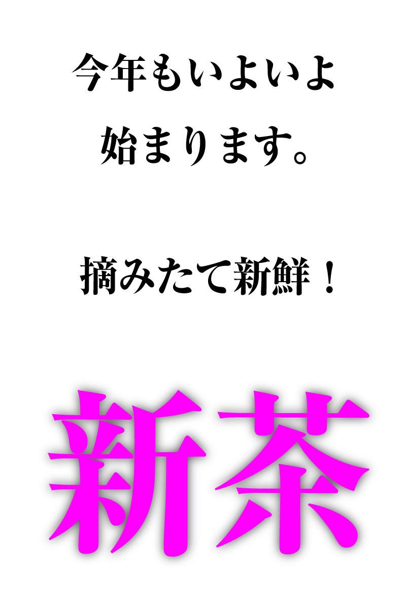 掛川茶「大走り・初摘み・八十八夜」お得な3点セット