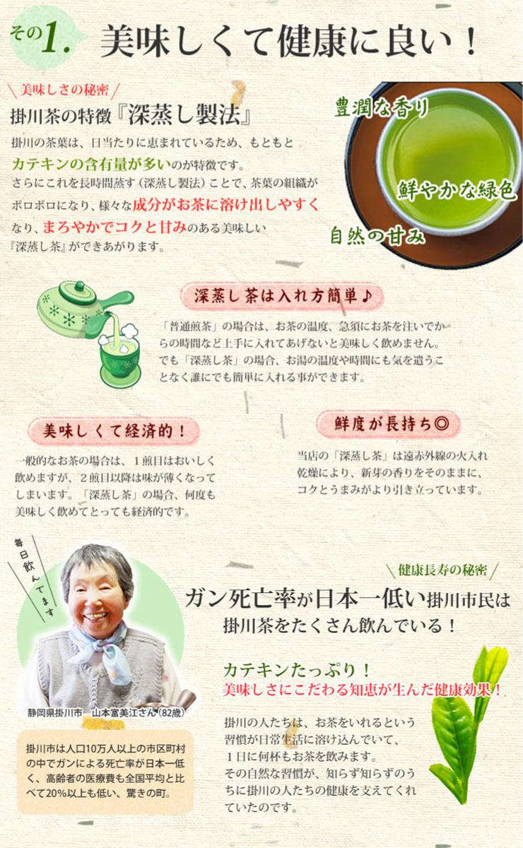 B-1静岡掛川茶初摘み深蒸し茶深むし茶100g入り日本茶緑茶お茶