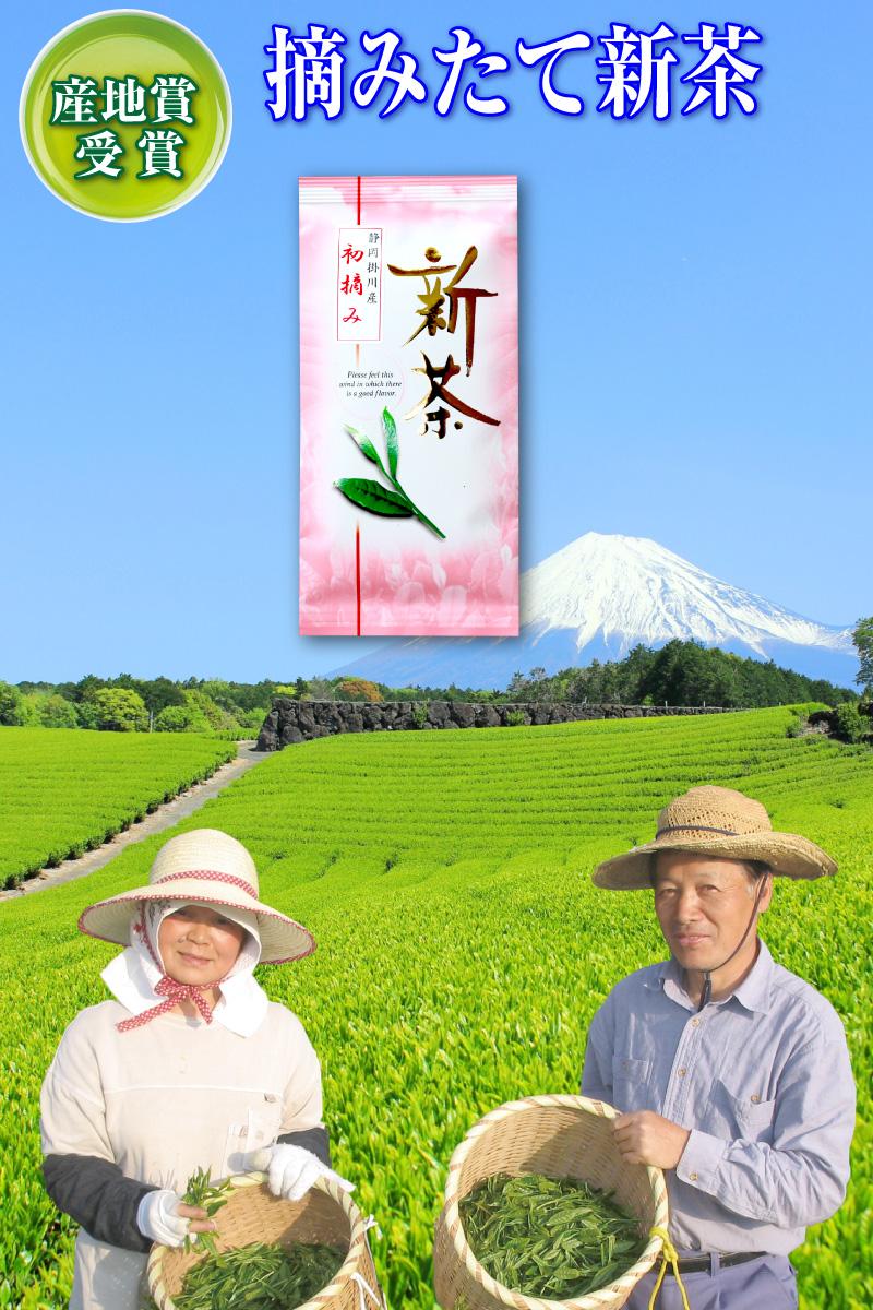 B-1静岡掛川茶初摘み新茶深むし茶100g入り