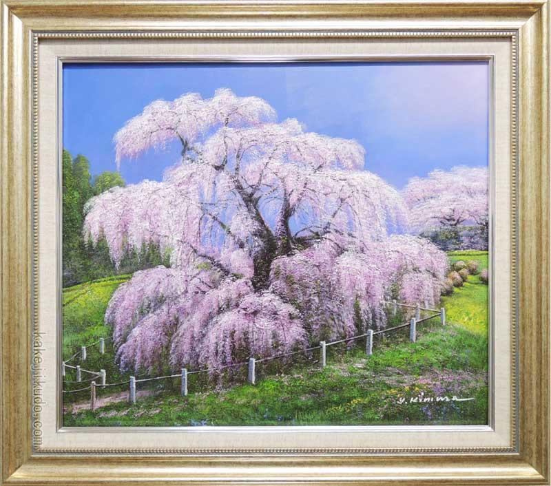 絵画 油絵 三春滝桜 (木村由記夫) 送料無料 【肉筆】【油絵】【日本の風景】【10号】