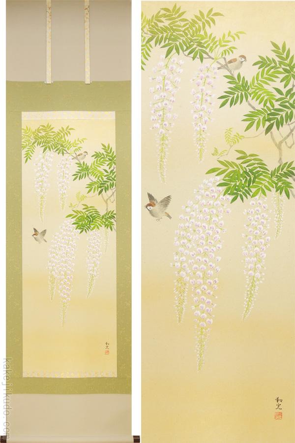 掛け軸 藤の花 (三宅和光) (掛軸小物なし) 送料無料 【掛軸】