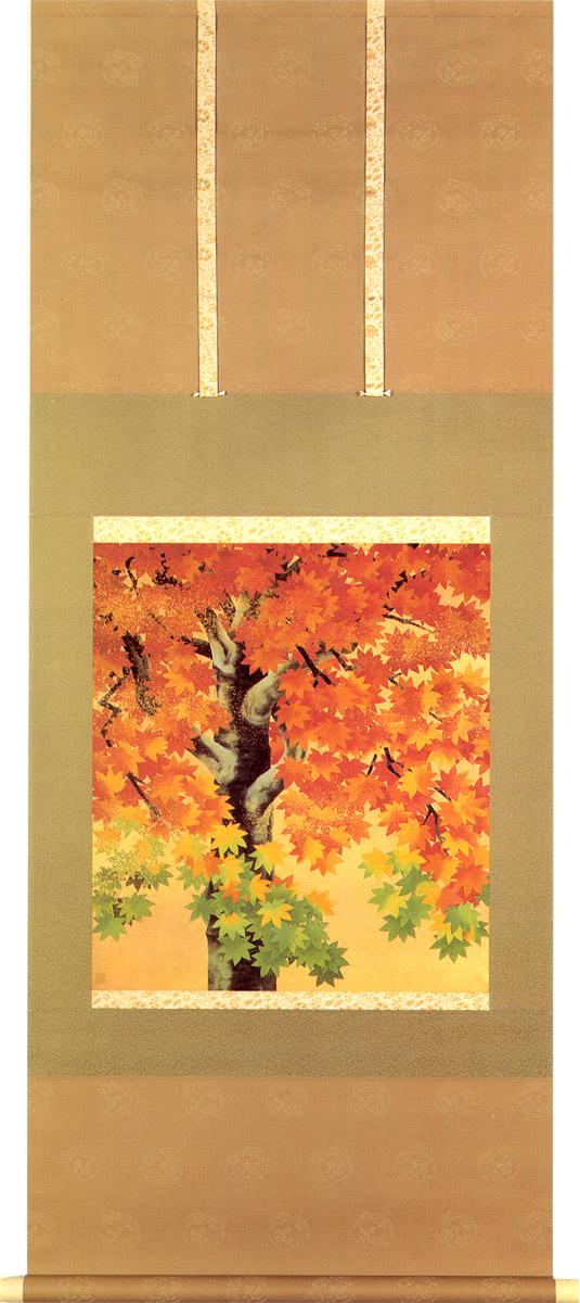 山口蓬春  掛け軸 楓図 送料無料 【掛軸】【一間床・半間床】【丈の短い掛軸】【秋】