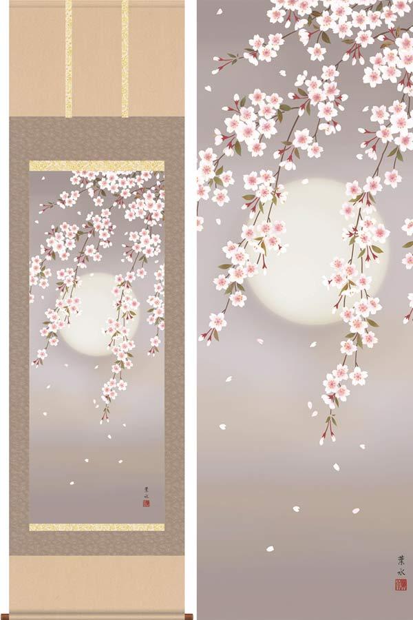 掛け軸 夜桜 (緒方葉水) 送料無料 掛軸