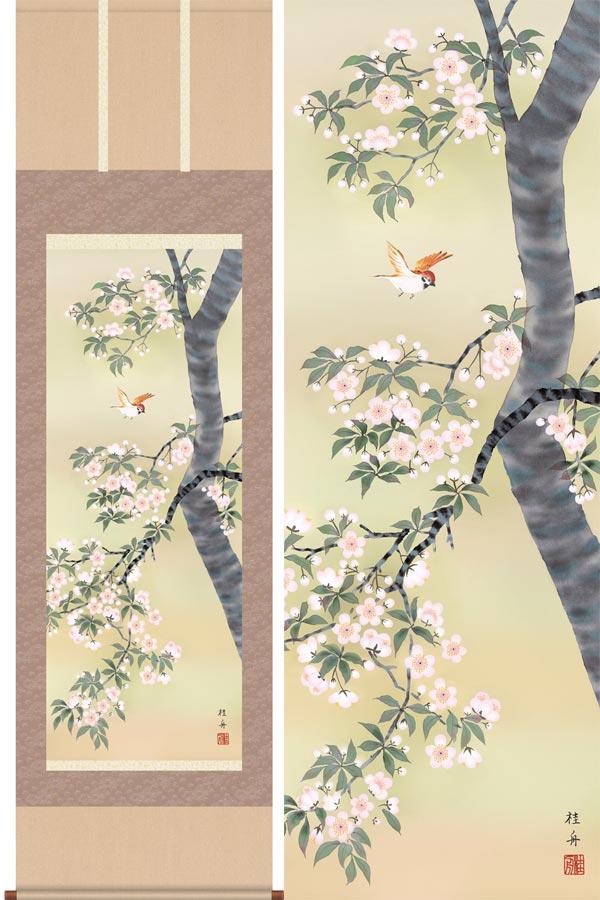 掛け軸 桜花に小鳥 (長江桂舟) 送料無料 掛軸