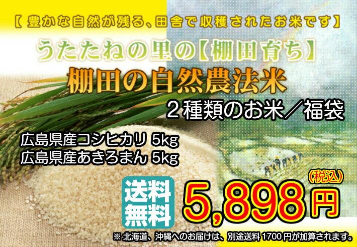 棚田の自然農法米 金袋 特別栽培米 広島県産ミルキークイーン 28年産1等米 10kg 15kgお届け 送料無料