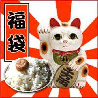 29年産1等米 おめでたいお米福袋 送料無料 お米の福袋ごはんの美味しい所をぎゅっと詰め込みました