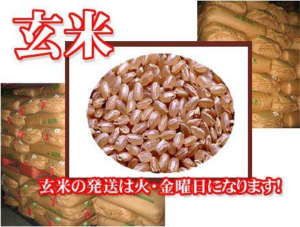 29年産1等米 長野県産コシヒカリ 30kg 玄米 送料無料 農産物検査済み1等玄米