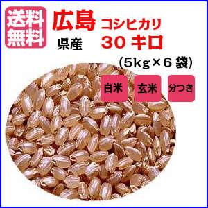 送料無料 新米 30年産 広島県産コシヒカリ 30kg 玄米 特別栽培米 5kg×6金の袋 30年産1等米