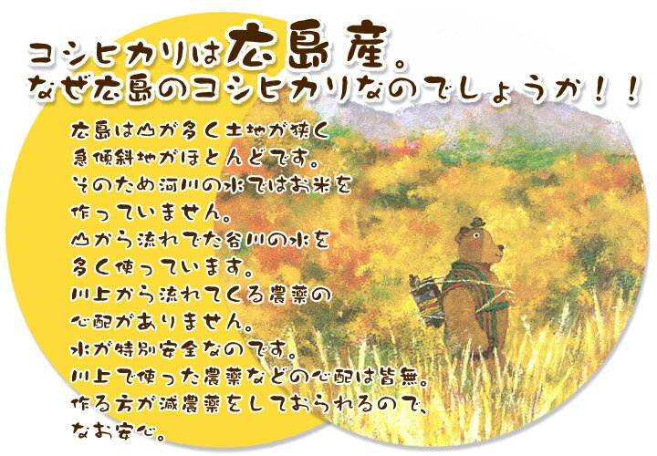 送料無料 新米 30年産 広島県産コシヒカリ 30kg 5kg×6無地袋袋 棚田の自然農法米 30年産1等米