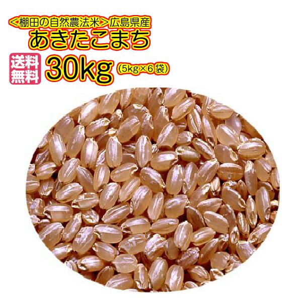 送料無料 広島県産あきたこまち 30kg 玄米 5kg×6無地袋30年産1等米
