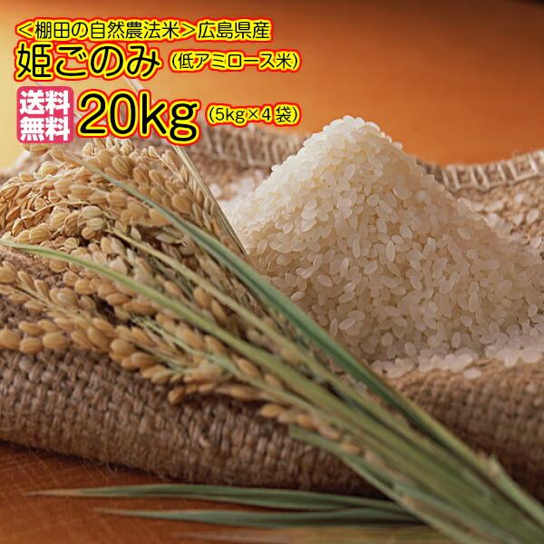 送料無料 広島県産姫ごのみ20kg 5kg×4袋 ゴールド袋ミルキークイーンと同じ低アミロース品種米30年産1等米