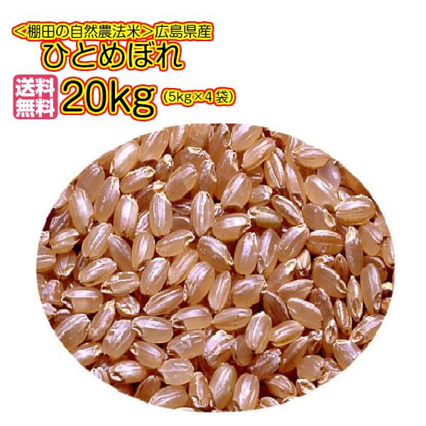送料無料広島県産ひとめぼれ 20kg 5kg×4無地袋 30年産1等米