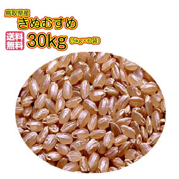 送料無料 鳥取県産きぬむすめ 30kg 玄米 赤袋 特A米令和元年産む1等米