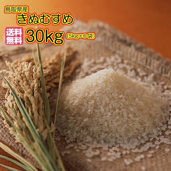 送料無料 鳥取県産きぬむすめ 30kg 特A米 赤袋当店高級米 令和元年産 1等米