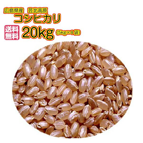 送料無料 広島県産コシヒカリ 20kg 玄米 5kg×4緑袋芸北高原コシヒカリ 20kg 清流米 令和元年産 1等米
