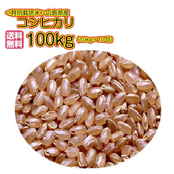 送料無料 特別栽培米 広島県産コシヒカリ 10kg 玄米×10回お届けコース各回5kg× 2ゴールド袋をお届け30年産1等米