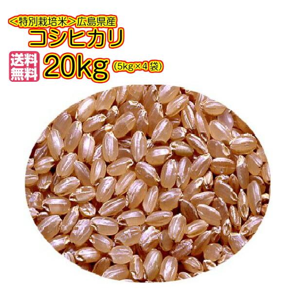 送料無料 広島県産コシヒカリ 20kg 玄米 特別栽培米 5kg×4金の袋30年産1等米