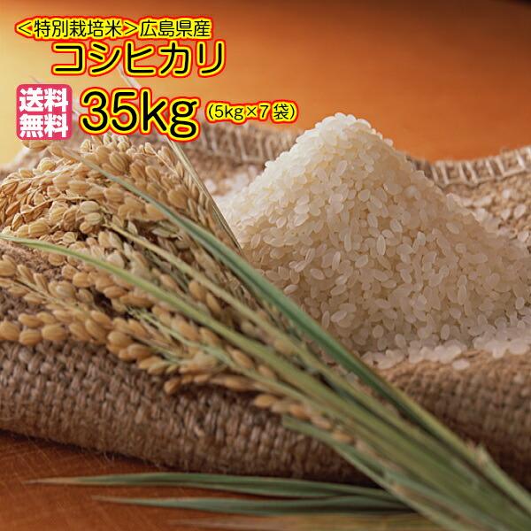 送料無料 広島県産コシヒカリ 30kg 特別栽培米 玄米 35kgお届け 金の袋お買い上げでお米5kgプレゼント付