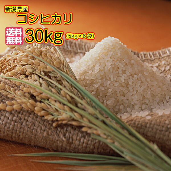 送料無料 新潟県産コシヒカリ 30kg 5kg×6袋当店一流米 30年産1等米