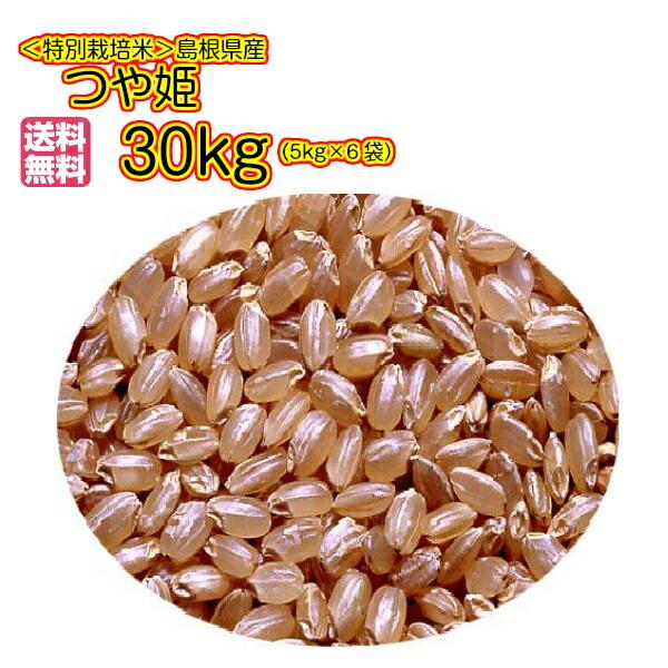 送料無料 島根県産 つや姫 30kg 玄米 5kg×6金袋奥出雲産 特別栽培米30年産1等米