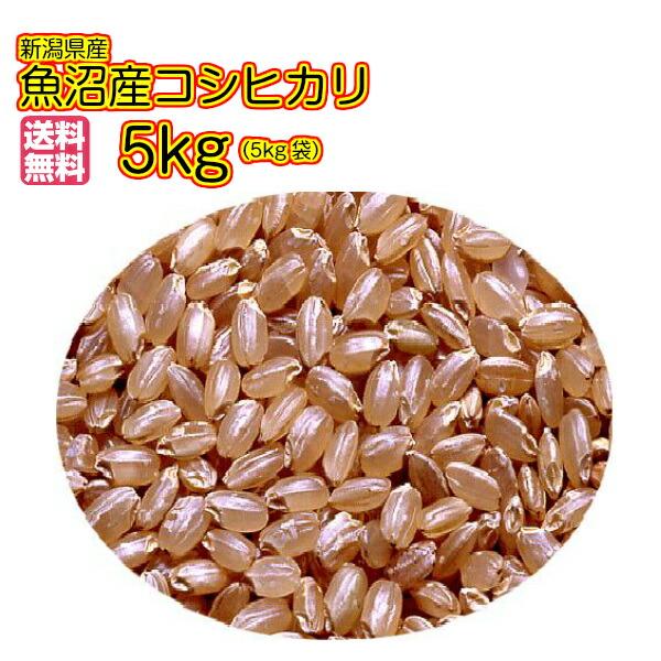 送料無料 魚沼産コシヒカリ 5kg 玄米 金色袋 当店最高級ダントツ品質米令和元年産 1等米