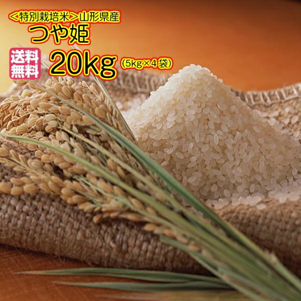 送料無料 山形県産つや姫 20kg 特別栽培米 特A米 5kg×4金の袋 令和元年産 1等米