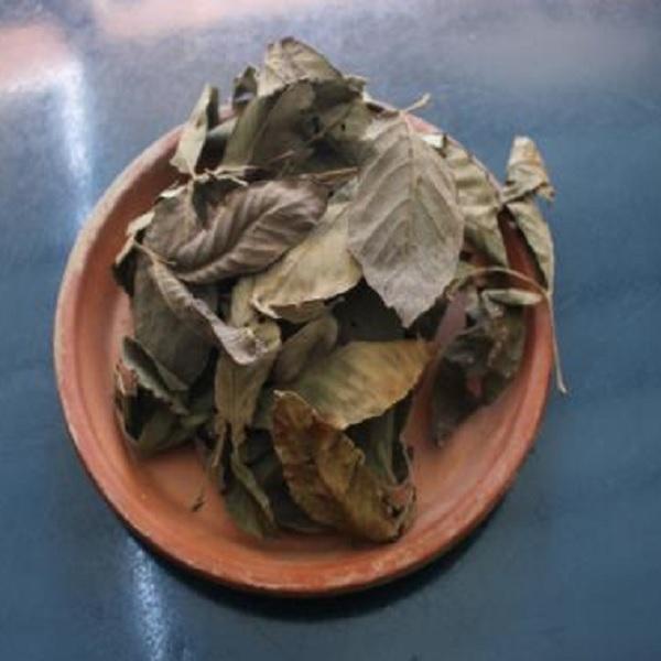 乾燥茶葉です 5%OFF いよいよ人気ブランド メグスリノキの葉 お茶