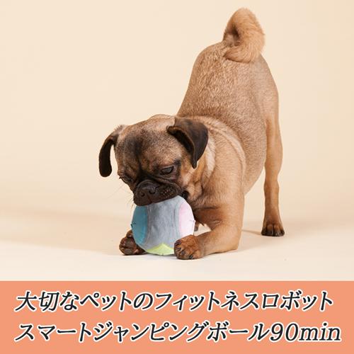 いぬのきもち5月号掲載 猫 犬 おもちゃ ペットおもちゃ 10kg以下 全自動 5分間動き回る 犬のおもちゃ 犬おもちゃ 動く 電動 再再販 一人遊び ネコ ペットUSB充電 ヘミルペット ボール 贈呈 繰り返し最大12時間 スマートジャンピングボール 5分間稼働 自動 お留守番 90分休憩