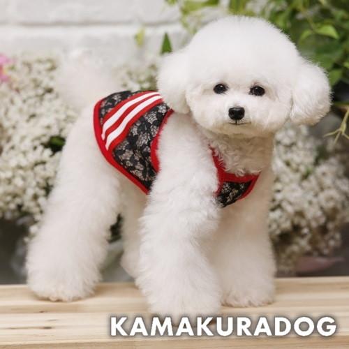 (メール便可)【犬 服】夏のおでかけに目を引くアイテム♪ 【犬の服】黒レースラインキャミ