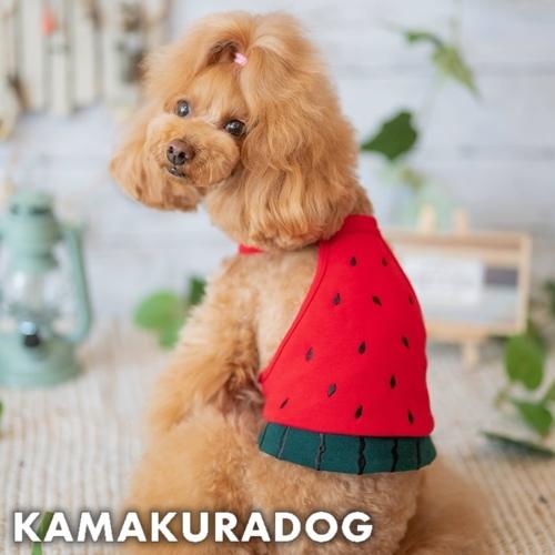 メール便可 注目ブランド 犬 服 つぶつぶ刺繍がかわいい 春の新作シューズ満載 犬の服 すいかキャミ