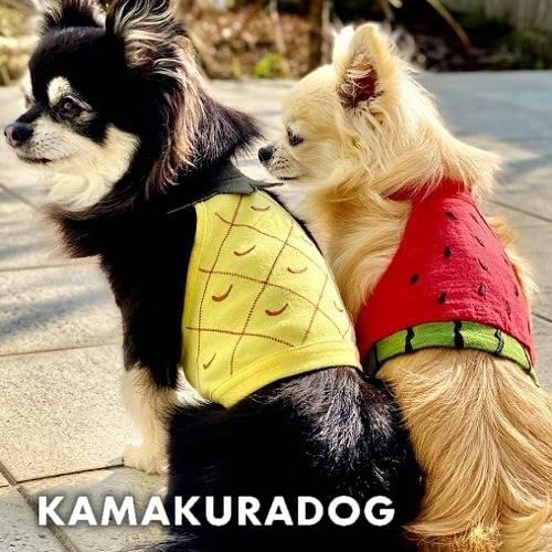 メール便可 犬 服 犬の服 フルーツショート丈キャミ 激安☆超特価 夏のお出掛けにキュート マート