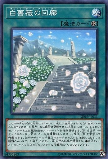 遊戯王 20PP-JP011 ノーマル 魔法 中古 Sランク 最安値に挑戦 専門店 白薔薇の回廊
