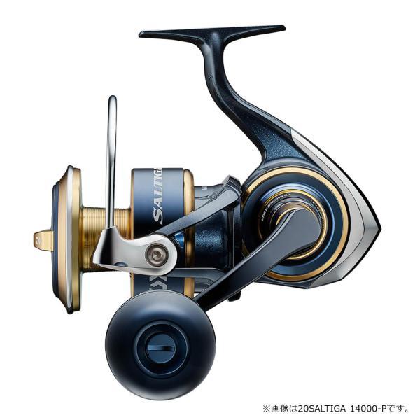 ダイワ '20 ソルティガ 8000-P (G) [90]