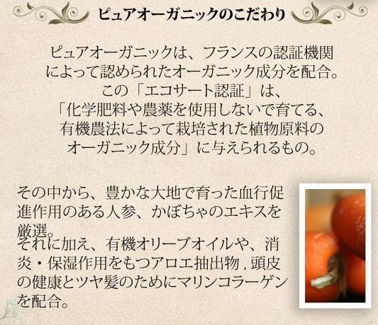 作为像纯的有机放松橄榄洗发水750ml&毛包1000ml安排有机成分含有的/有机/ekosato/葡萄酒瓶那样的欧洲的古典的漂亮的容器♪