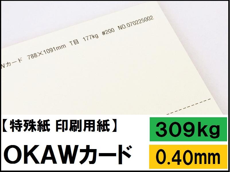 【特殊紙】OKAWカード 309kg(0.40mm) A3 100枚【ファンシーペーパー 印刷用紙 厚い紙 厚紙】