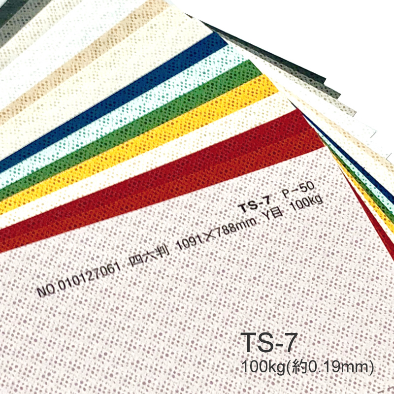 在庫あり TS-7 タントセレクト7 100kg微細な穴で作る模様が透明感と3Dのような効果を演出 特殊紙 100kg 0.19mm エンボス 型押し模様 印刷用紙 ファンシーペーパー 選べる16色 レビューを書けば送料当店負担
