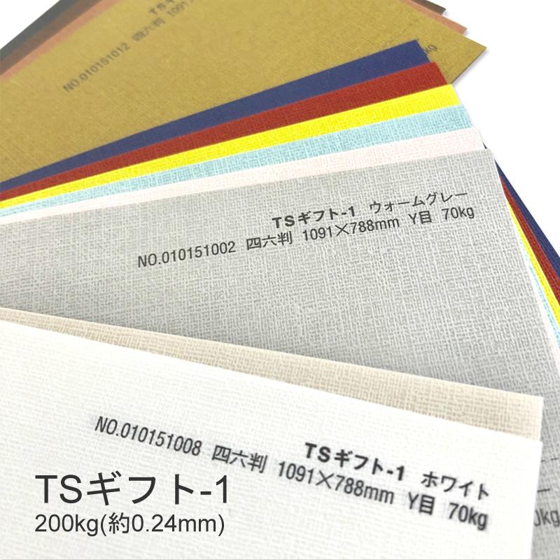 【特殊紙】TSギフト-1(タントセレクトギフト-1) 200kg(0.24mm) A3 100枚選べる12色【ファンシーペーパー 印刷用紙 型押し模様 エンボス】