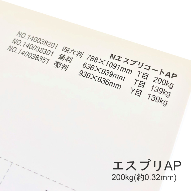 【特殊紙】エスプリAP 220kg(0.32mm) A3 100枚【プリンター用紙 キャストコート】