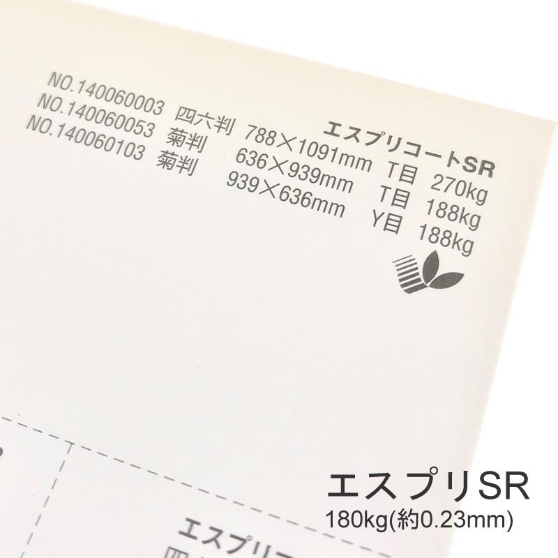 【特殊紙】エスプリSR 180kg(0.23mm) A3 100枚【キャストコート 再生紙 ツルツル】