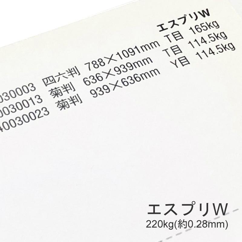 【特殊紙】エスプリW 220kg(0.28mm) A3 100枚【両面キャストコート ツルツル】