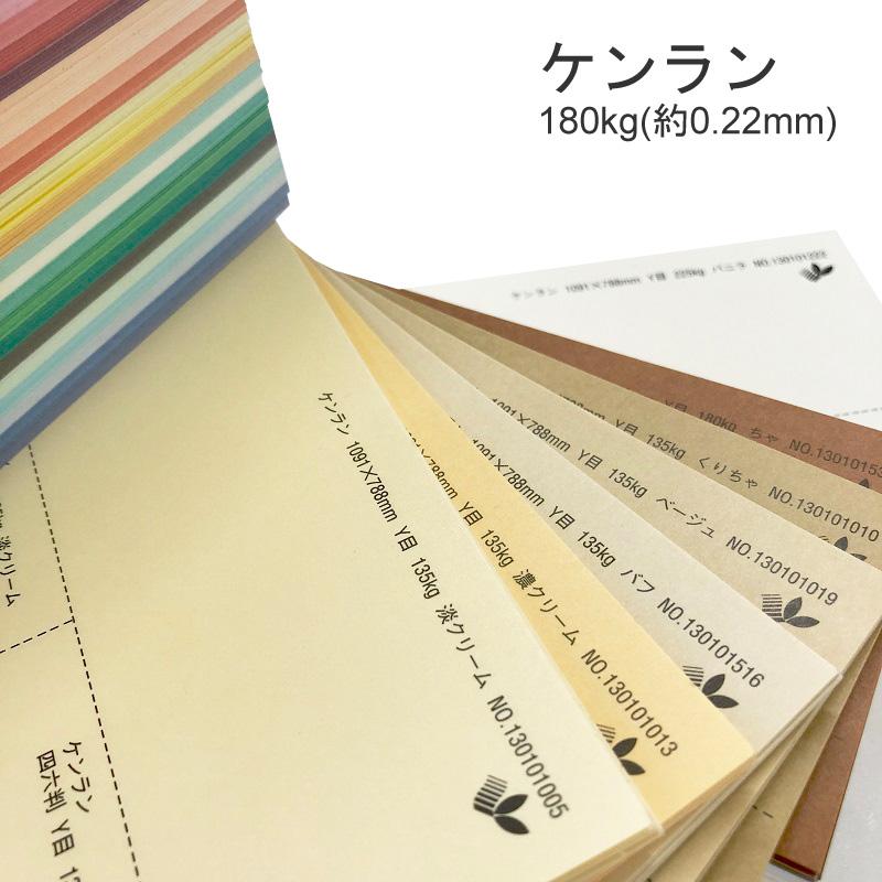 【特殊紙】ケンラン 180kg(0.22mm) A3 100枚選べる44色(あ~た行【ファンシーペーパー 印刷用紙 カラー用紙 カラーペーパー 紙飛行機 カード 平らな紙 カラー ケント紙 再生紙 古紙パルプ50%以上】