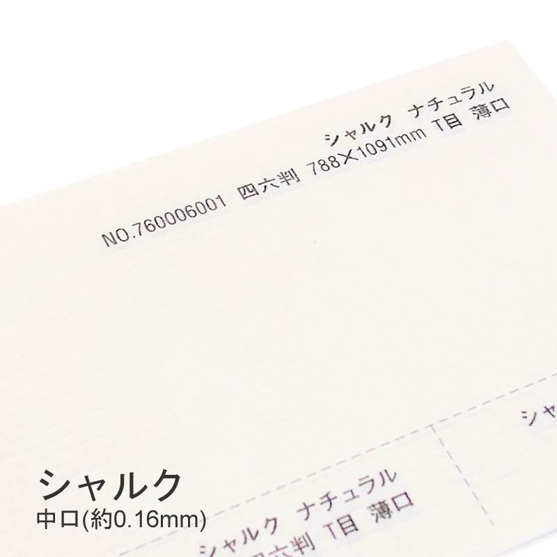 再再販 シャルク 中口細かいストライプエンボスが珍しい紙 特殊紙 中口 0.16mm ナチュラル色 クレープ紙 ファンシーペーパー ライン模様 セール価格 印刷用紙