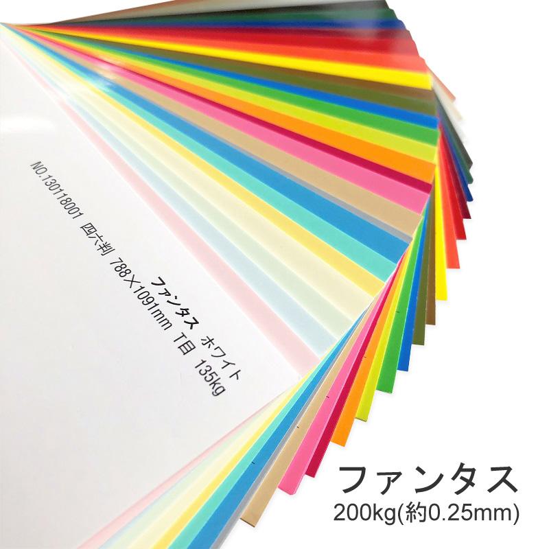 【特殊紙】ファンタス 200kg(0.25mm) A3 50枚【ファンシーペーパー 印刷用紙 キャストコート 冊子 同人誌 表紙 ペーパーアート ペーパークラフト 工作】