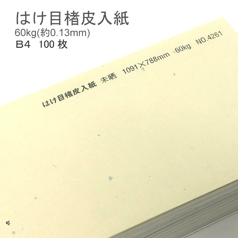 【 和紙 】 はけ目楮皮入紙 未晒 厚さ 60kg ( 0.13mm ) B4 100枚   和風 ナチュラル 柄 懐紙 遊び紙 書簡紙 メニュー 料理 掛け紙 ランチョンマット ブックカバー
