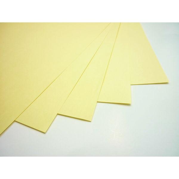 色上質紙 中厚口 A4 2000枚 選べる25色 | 紙 ペーパー 色上質 印刷用紙 印刷 用紙 プリンター用紙 プリンタ用紙 コピー用紙 カラーコピー用紙 カラーペーパー インクジェット用紙 普通紙 色画用紙 色 画用紙 白 インクジェット レーザープリンター カラー 上質紙
