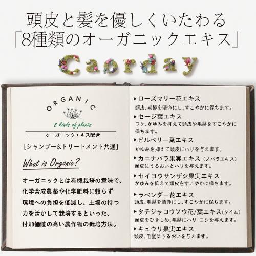 购物马拉松正好特别计划3000日元!一个人设置1个限度harukosumetikkusukaorudeishampu S3 300ml 1个+处理T3 200g 1个+油玫瑰花束100ml 1个共计3个尝试