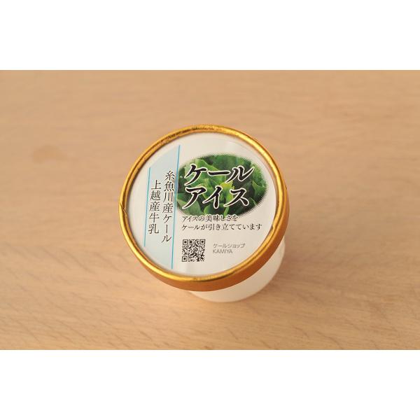 超美品再入荷品質至上 ケールなのにクセが無くミルクのうま味が引き立つ メーカー再生品 ケールアイス